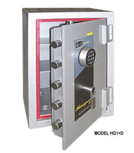 homeguard_plus_domestic_security_safe-350x400